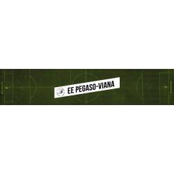COL. PEGASO-VIANA