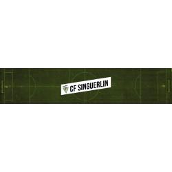 COL. SINGUERLIN